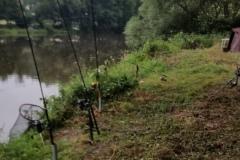 Wallerfischen-2019-6